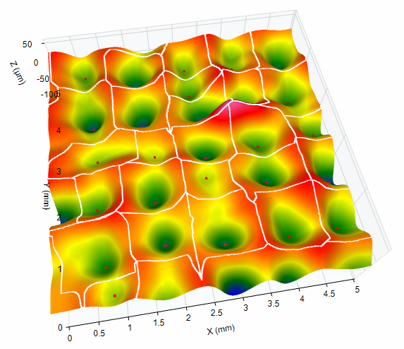 surface texture - OmniSurf3D software displays ridge lines and local pits.